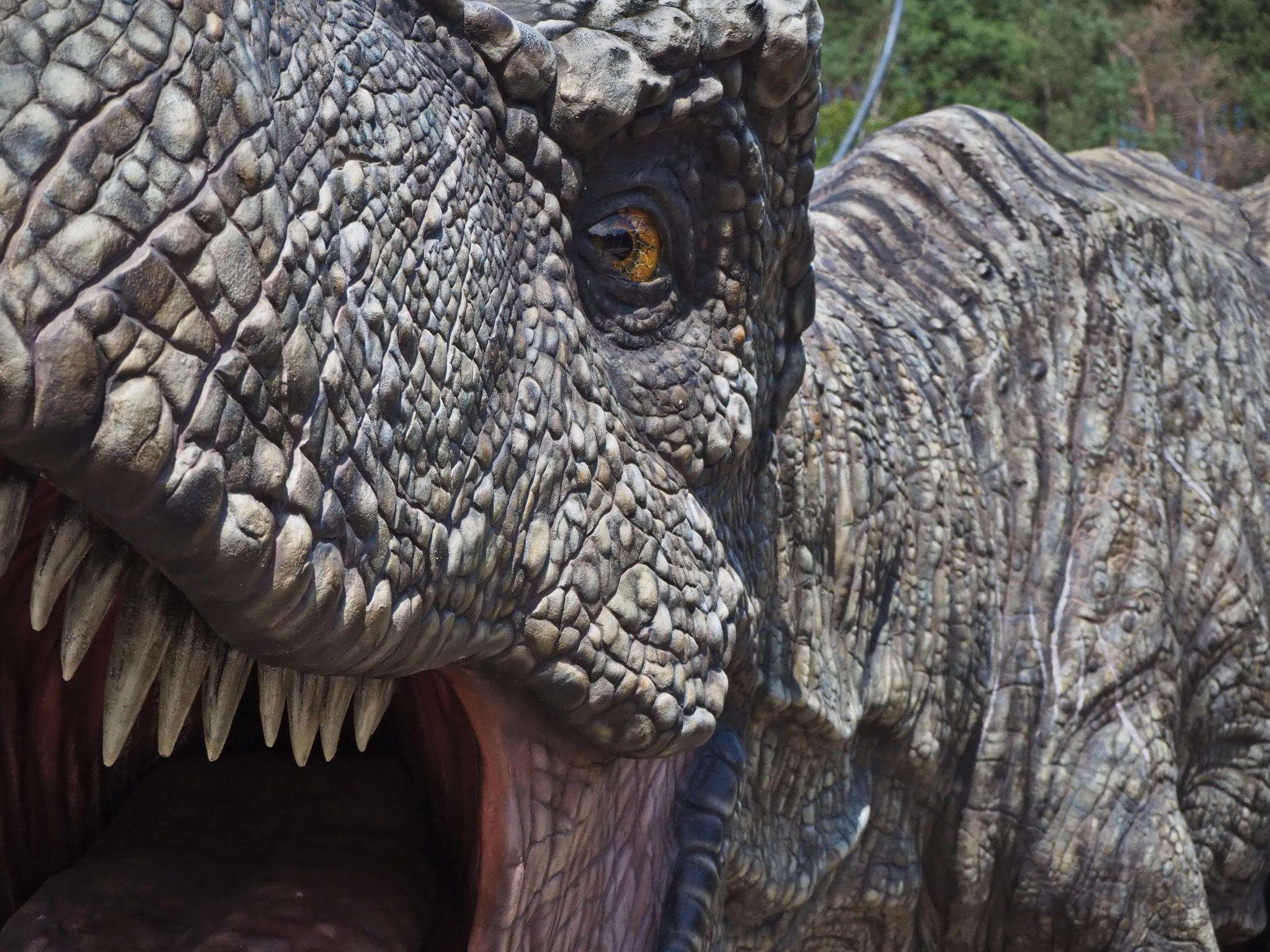 T-Rex mit aufgerissenem Maul